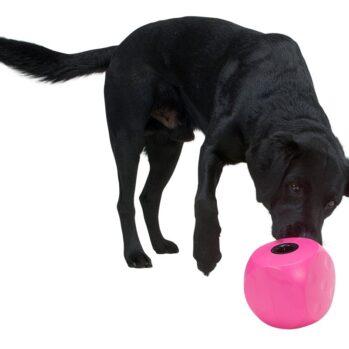 Underholdende aktivitetslegetøj til alle hunde
