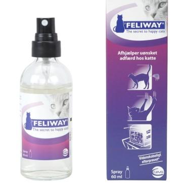 feliway spray cat