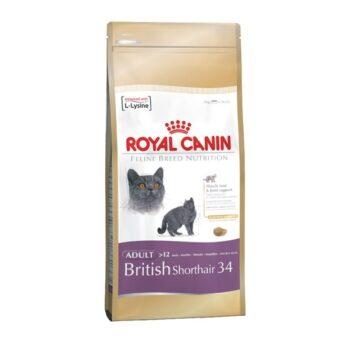 Royal Canin British Shorthair kattefoder voksenfoder