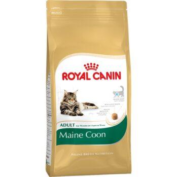 Royal Canin Maine Coon kattefoder voksenfoder