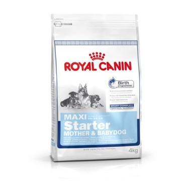 Royal Canin Maxi Starter Mother&Babydog hundefoder hvalpefoder