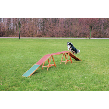 trixie dogwalk