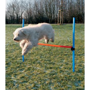 trixie hæk agility