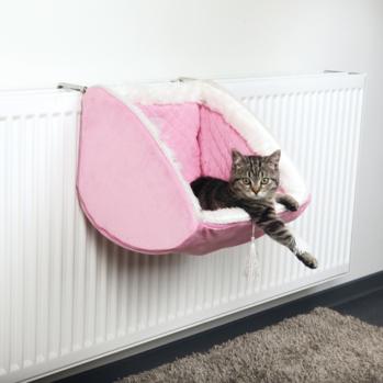 pink radiatorseng