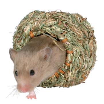 hamsterhule af græs