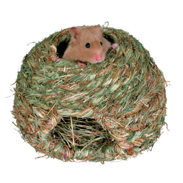 stor hamsterhule græs