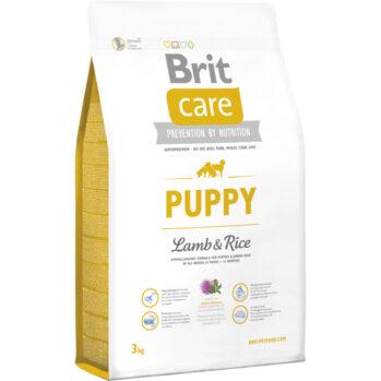 Brit hvalp lam og ris