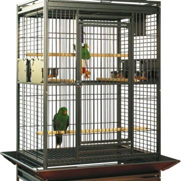 papegøjebur wellington