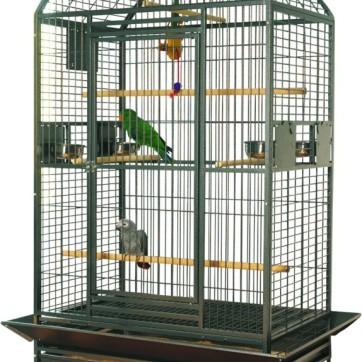 papegøjebur karumba