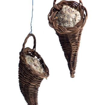 pileflethorn med fedtfoder
