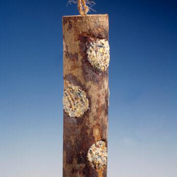 træstamme med foder