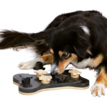 dog activity game bone.