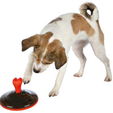 dog activity snack spinner