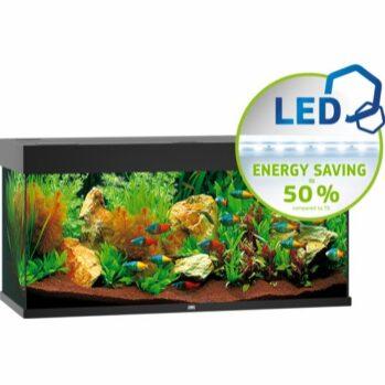 juwel rio 180 liter akvarium