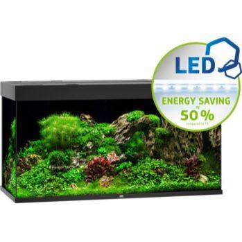 rio 350 akvarium