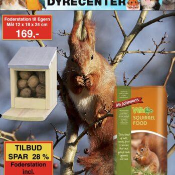 Egernfoder automat med egernfoder