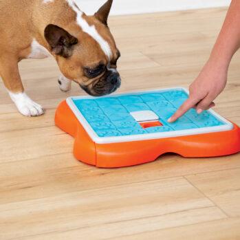 Challenge slider - Aktivitetslegetøj til alle hunde