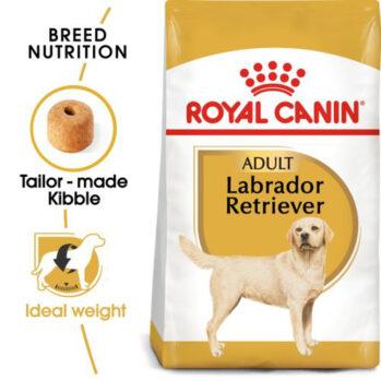 Royal Canin Labrador Retriever voksen 12 kg